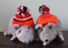 IKEA rats in orange caps