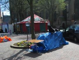 staking out a spot for Queens/Kings Night vrijmarkt, Alkmaar, Netherlands